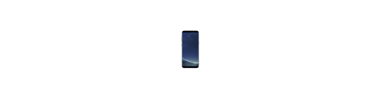 Galaxy S8+ (G955F)