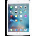 iPad Mini 4 (A1538/A1550)